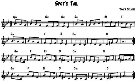 Spot's Tail